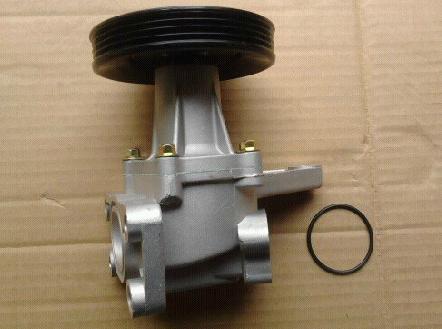 WPP41190                                  - N300,N300P,N200                                  - Water Pump                                 ....132036
