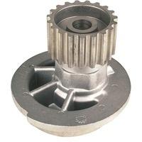 WPP43496                                  - CRUZE J300 09-                                  - Water Pump                                 ....135599