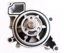 WPP63571                                  - CAPTIVA 06-                                  - Water Pump                                 ....162386
