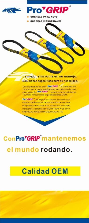 PRO79191(ES)                                 - PROGRIP                                 - Promotion                                 ....182492