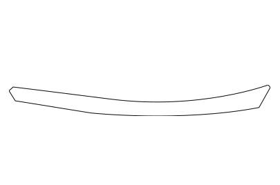 BDS81909(R)                                  - 4RUNNER 09-                                  - Body strip                                 ....185981